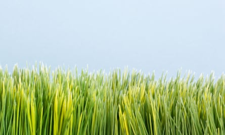 Strip of artificial green grass against blue background
