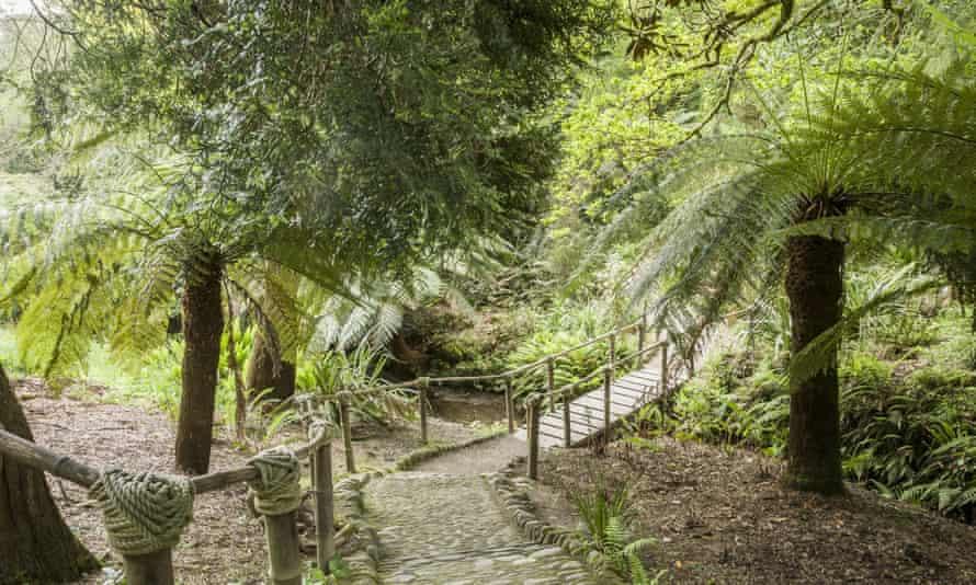 A bamboo bridge in the Lower Valley at Glendurgan Garden, Cornwall.