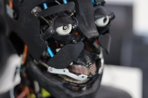 'Baudi' was developed to demonstrate the difference made by static and moving pupils in humanoid robots