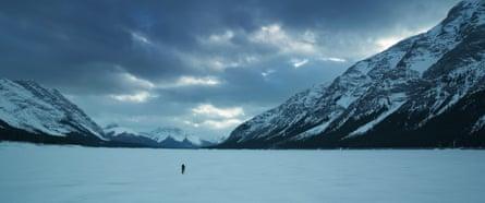 A scene from The Revenant, as filmed by cinematographer Emmanuel Lubezki.