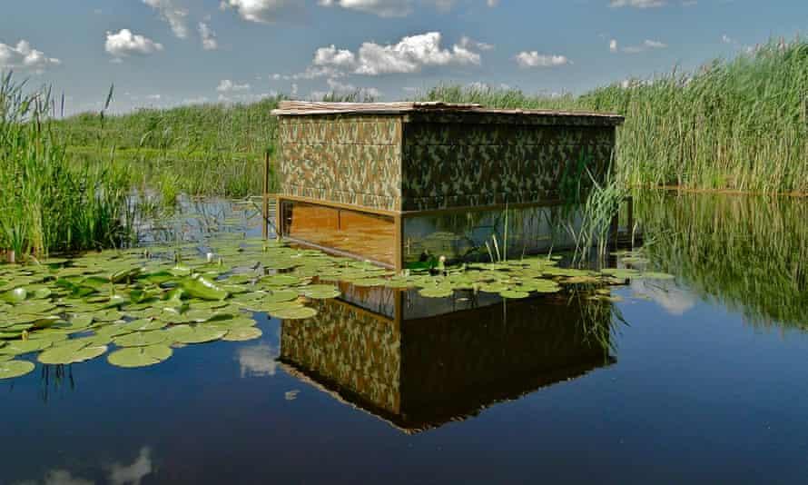 Floating hide at Kondor Ecolodge, Hungary