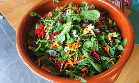 Feast and Forage workshop with Hart's Barn Cookery School