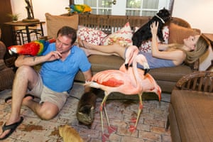 Family with macaws, flamingos, cats, and dog, Homestead, Florida, 2013Sage writes: 'In the 1980s and 90s, when I was shooting in black and white, I photographed many people with their companion animals. Beginning in 2008, I decided to expand my approach. Working in colour, with a digital camera, I started to include not just people with their pets but also other kinds of caring relationships that people have with animals. I photographed at refuges for exotic animals that had been raised in captivity, wildlife rescues, dog and cat rescues, farm animal sanctuaries, and traditional farms'