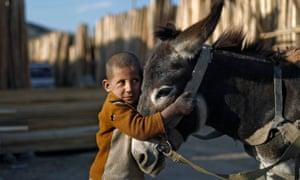 Afghan boy cuddling a donkey