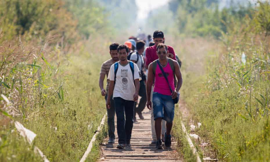 A group of migrants walk to Serbia's border with Hungary.