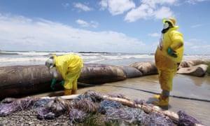 Port Fourchon Louisiana Shell oil