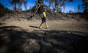 A farmer walks along the dried-up bed of the Namoi River near Walgett.