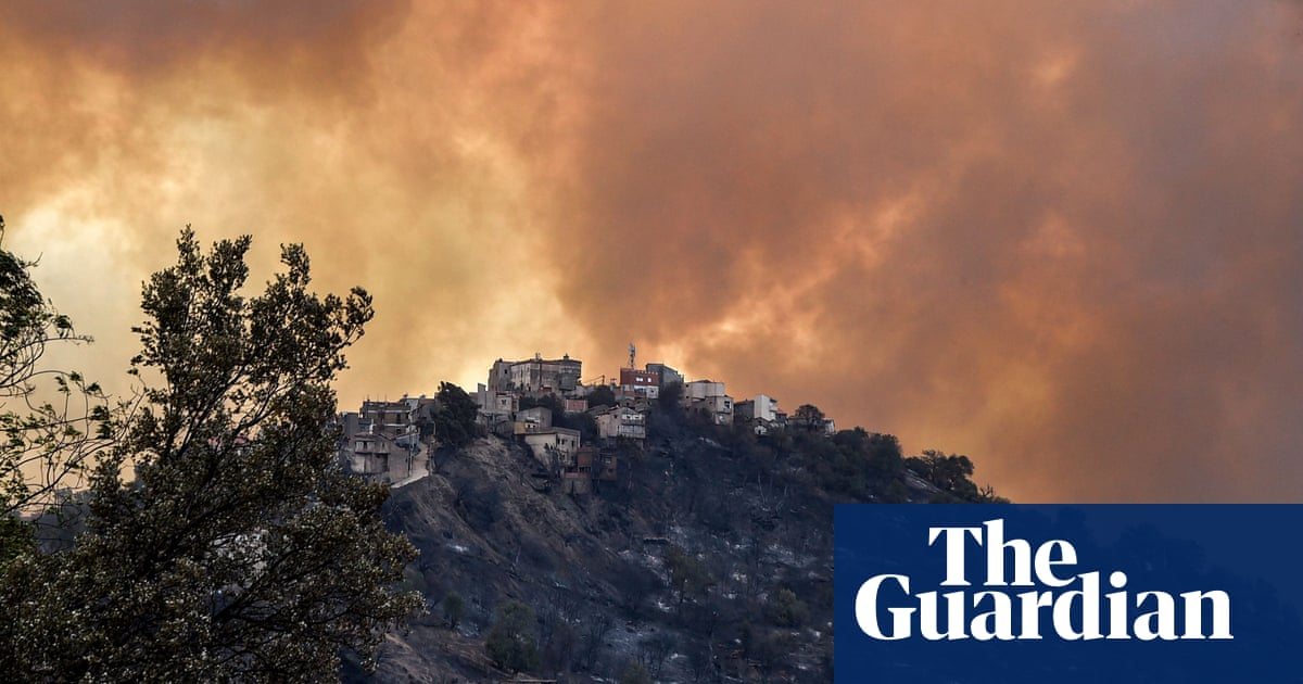 Wildfires in Algeria leave more than 40 dead including soldiers – video