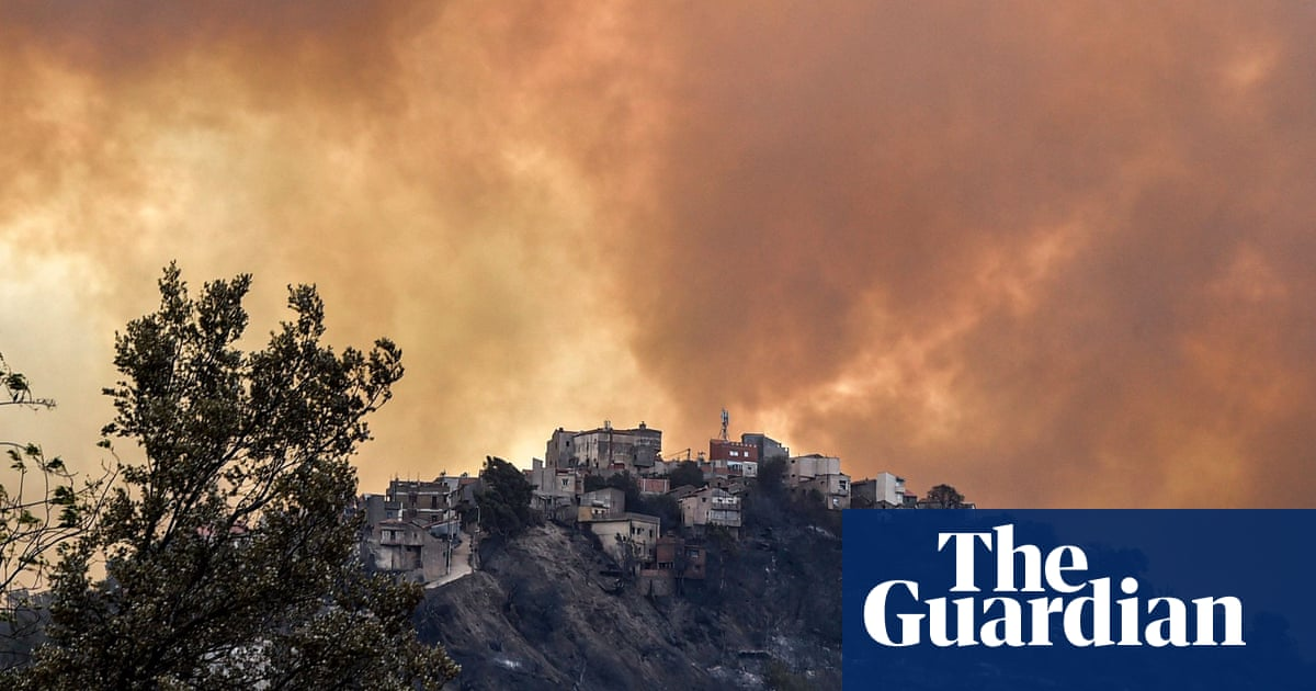 Wildfires in Algeria: dozens of civilians and soldiers reported dead