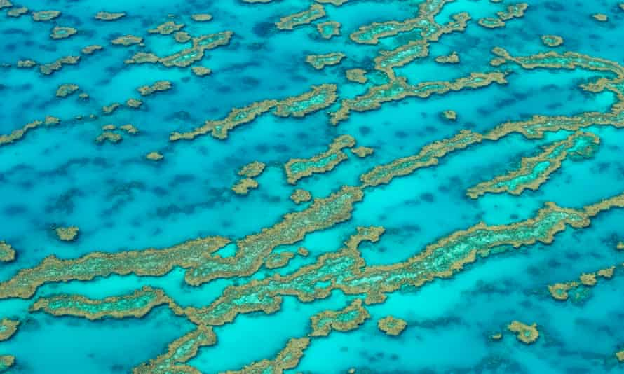 Hardy Reef located in The Great Barrier Reef, North Queensland.