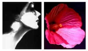 Lisa Fonssagrives, Harper's Bazaar, circa 1950 / Flower 28 (Pink Mallow), 2006