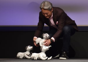 Sony chief executive Kazuo Hirai bends down to pet one of the new Aibo robotic dogs.
