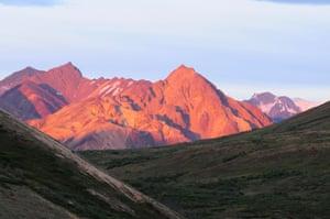 View of Double Mountain, Denali National Park, Alaska.