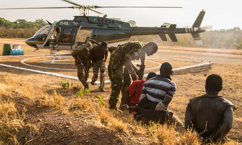 Suspected poachers caught in Chinko arrive at the park's main base.