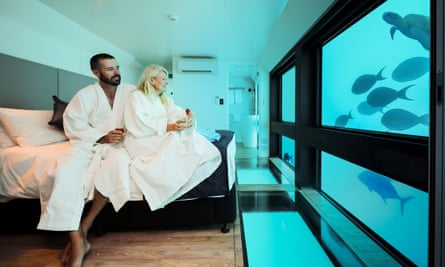 Hotel guests in bathrobes stare at a turtle and fish in a Reefsuites room on the Great Barrier Reef.