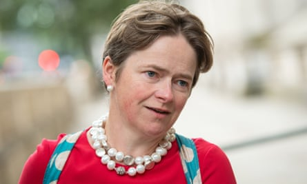Tory peer Baroness Dido Harding is head of the troubled NHS test and trace system as well as leading the new National Institute for Health Protection.