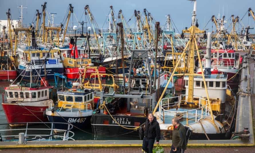fishing vessels moored in Brixham harbour