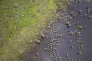 An aerial view from a helicopter over Kakadu National Park