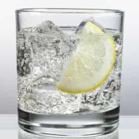 A glass of gin and tonic, ice and lemon