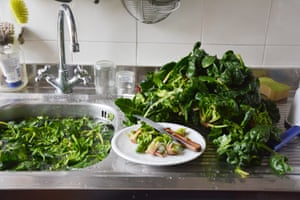 Rachel Roddy's Kitchen Sink Tales: freshly picked spinach