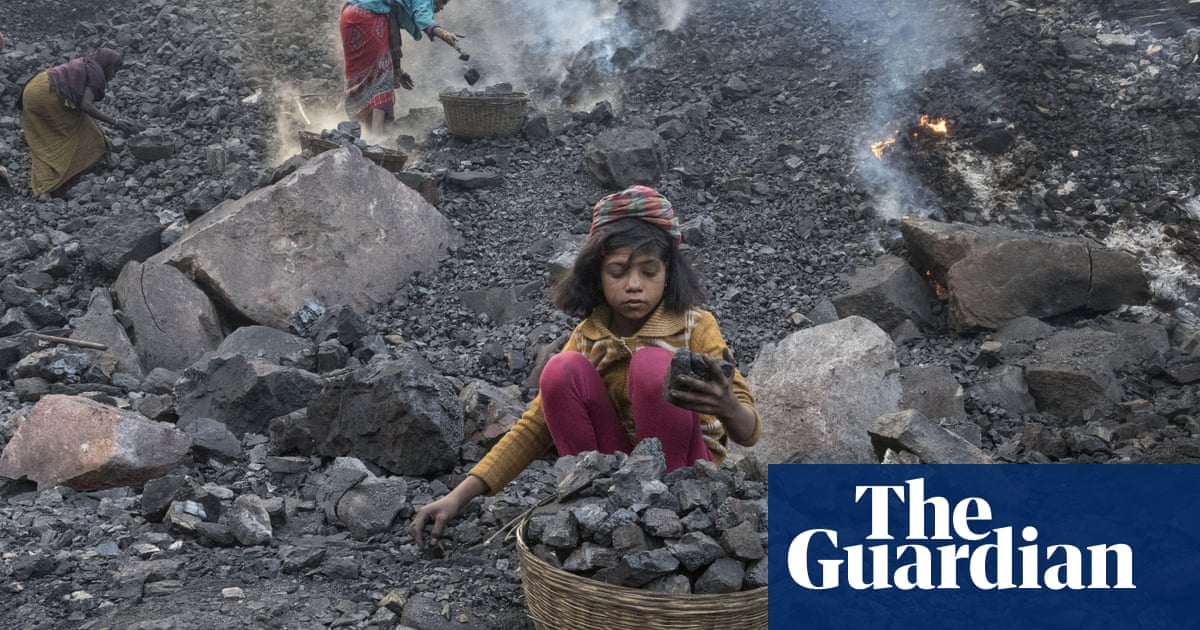 India plans to fell ancient forest to create 40 new coalfields