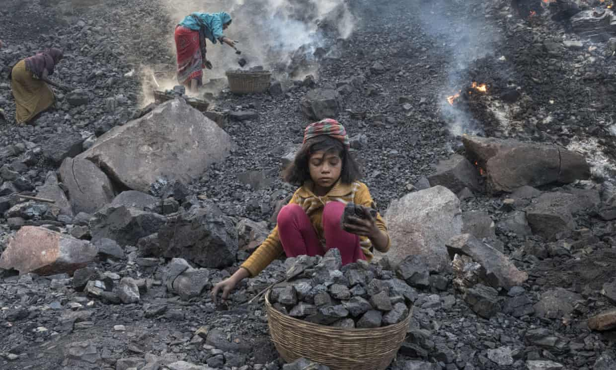 India plans to fell ancient forest to create 40 new coalfields thumbnail