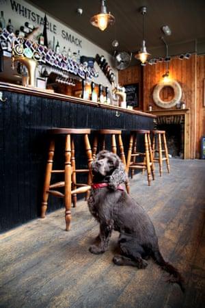 Barney from the Smack Inn, Whitstable