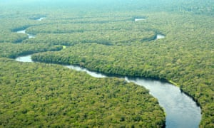 An aerial view of Salonga national park in the Democratic Republic of the Congo