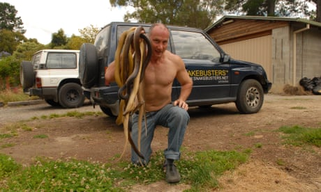 'Don't go near it': Covid-19 lockdown leads to deadly snake boom in Melbourne