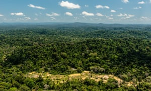 Brazil's Renca reserve is roughly the size of Switzerland and home to some of the world's richest biodiversity.