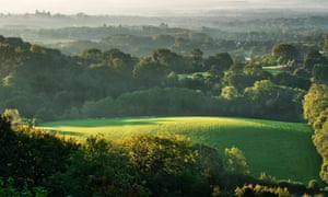 The view from Shoulder of Mutton Hill in Ashford Hangers near Petersfield, Hampshire, England
