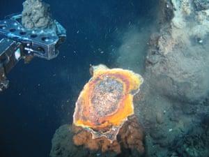 Deep sea mining off Papua New Guinea coast : SMS sampling using ROV arm