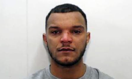 Michael Ricardo Robinson pleaded guilty to causing death by dangerous driving