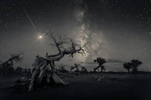 Across the Sky of History by Wang Zheng