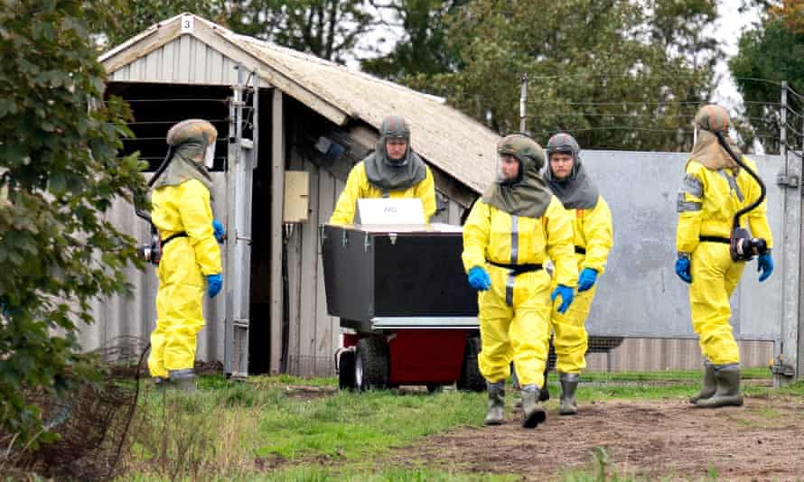 Employees from the Danish veterinary and food administration and the Danish Emergency Management Agency in PPE during October's cull.