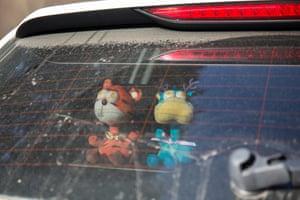 Stuffed toys on the back shelf of a car