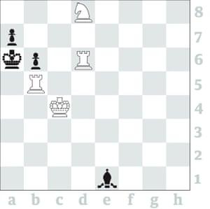 Chess 3592