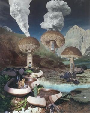 'Untitled Mushroom' by Seana Gavin.