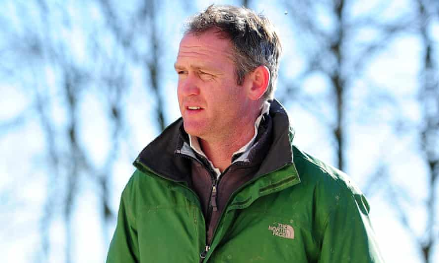Assistant trainer Joe Tizzard has made very encouraging comments about his stable's Gold Cup hope Alary.