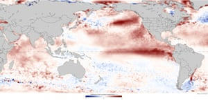 Sea surface anomalies in August 2015