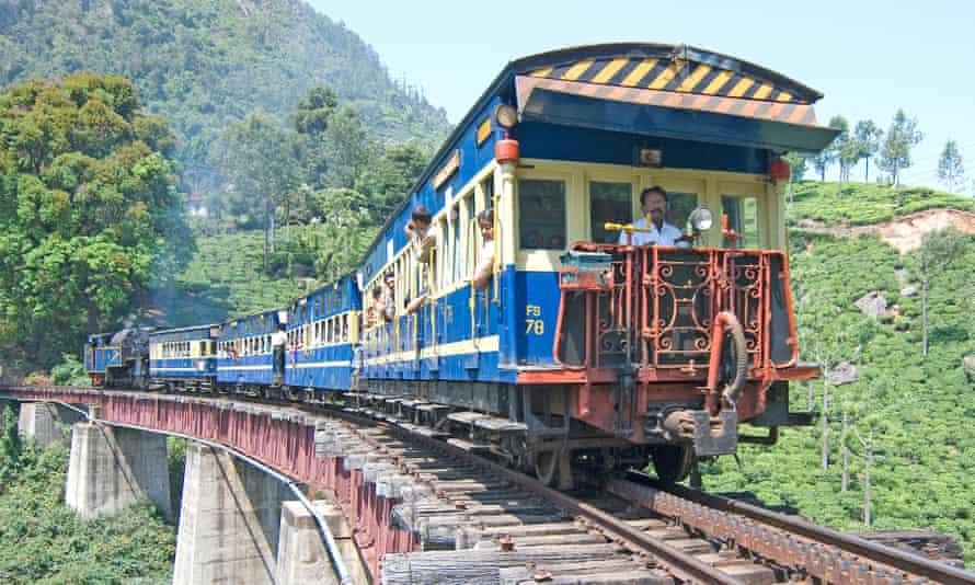 Nilgiri Mountain Railway, moving through a tea estate, Tamil Nadu