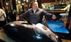 Sushi king pays record $3.1m
