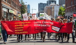 Protesters in Montreal  campaigning against genetically modified organisms and Monsanto