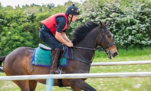 Jay Tabb on the gallops. Does he miss football? 'No, in a word.'
