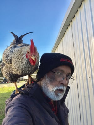 A man with a rooster