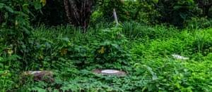 Jungle toilet in Vang Vieng, Laos.