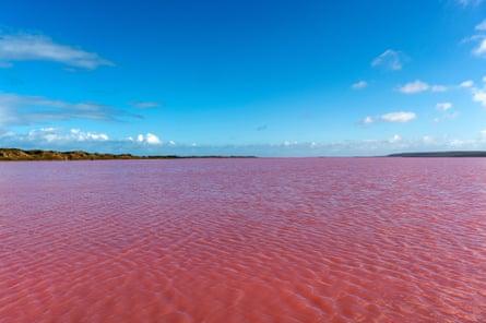 Pink Lake, Hutt Lagoon, Port Gregory (near Kalbarri), Western Australia