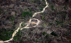 Beauty and destruction: the Amazon rainforest – in pictures