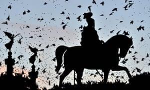 A murmuration of starlings flies over the Altare della Patria (Unknown soldier) monument in Rome.
