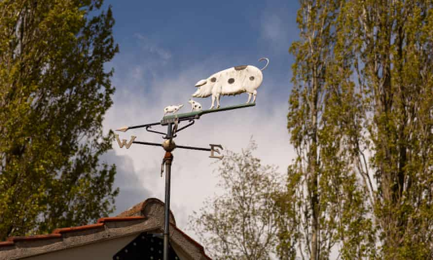 A wind vane